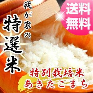 【29年産】【玄米 20 kg 送料無料】秋田県産 減農薬 特別栽培米 あきたこまち 米(10kg×2袋)一等米【お米】【お祝い】【御贈答】