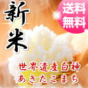 【29年産】【新米】【米 30kg 送料無料】秋田県産 あきたこまち 玄米(10kg×3袋)【一等米】【お米】【白米 27kg】【お…