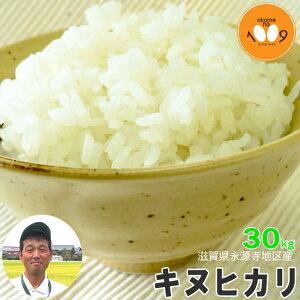 米 滋賀県永源寺地区産 キヌヒカリ 玄米 30kg ニシオカファーム 令和2年産 送料無料 産地直送