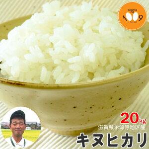 米 滋賀県永源寺地区産 キヌヒカリ 玄米 20kg ニシオカファーム 令和2年産 送料無料 産地直送