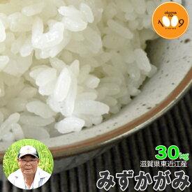 新米 滋賀県長浜産 みずかがみ 玄米 30kg 産地直送 アグリ39 令和元年産 環境こだわり米(減農薬) 送料無料