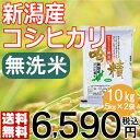 【米】無洗米 吟精 新潟産コシヒカリ10kg(5kg×2袋)【送料無料】【28年産】【新潟ケンベイ】