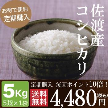 【定期購入】毎回ポイント10倍!佐渡産コシヒカリ5kg(5kg×1袋)