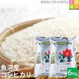 新米 魚沼産 コシヒカリ 6kg(3kg×2袋) 送料無料 令和2年産 こしひかり 新潟から産地直送