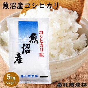 新米 魚沼産 コシヒカリ 5kg(5kg×1袋) 食味ランキング特A 米 5kg 送料無料 こしひかり 新潟 白米 精米