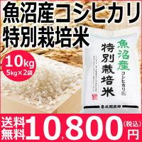 【20年産新米】減農薬栽培魚沼産コシヒカリ10kg<1等・検査米>