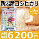【米】【コシヒカリ】新潟産コシヒカリ10kg(5kg×2袋)【送料無料】【28年産】新潟から産地直送