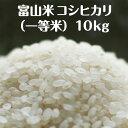 富山県産コシヒカリ(一等米)10kg【令和元年度産】
