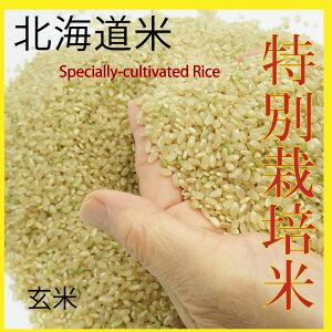 新米 減農薬特別栽培米 ゆめぴりか 30kg  玄米 北海道産