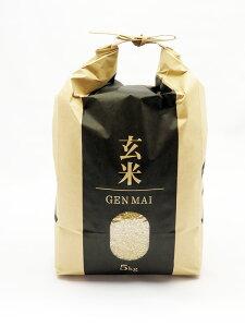 新米 ゆめぴりか 玄米 10kg(5kg×2)  北海道産