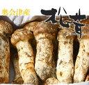 【松茸】松茸 国産 コロ(小型 蕾・中開き)約100g 奥会津産・岩手県産 秋の味覚 山の幸 超高級 希少食材 国産 まつた…
