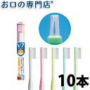 【送料無料】 V-7(ブイセブン) コンパクトヘッド 10本セット ハブラシ/歯ブラシ 歯科専売品