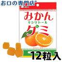 【あす楽】BSA みかんキシリトールグミ 12粒(48g) × 1袋 【メール便OK】【歯科専売品】