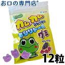 カムカムフレッシュ キシリトールグミ グレープ味1袋(12粒入)【メール便OK】