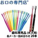 【送料無料】歯科専売品 大人用 歯ブラシ 20本 福袋/MY歯ブラシ/お試しセット
