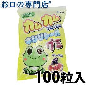 【あす楽】カムカムフレッシュ キシリトールグミ グレープ味1袋(100粒入) 歯科専売品
