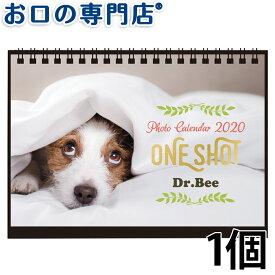 【あす楽】ドクタービー ワンショットカレンダー 2020×1個【メール便OK】