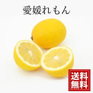【産地直送】【5kg】【送料無料】減農薬 愛媛産 国産レモン れもん 贈答 ギフト