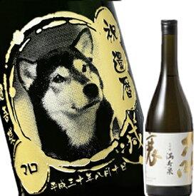 【 写真 彫刻 】 愛犬の写真をボトルに彫刻 満寿泉 大吟醸 ますいずみ 720ml | 日本酒 ギフト プレゼント 誕生日 記念日 お酒 お祝い 思い出 入り オリジナル メッセージ 贈り物
