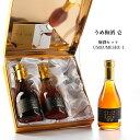 梅酒の希少な最長14年熟成ビンテージを厳選したプレミアムギフト『うめ梅酒 壱 -UMEUMESHU ICHI-』Vintage2006梅津梅…