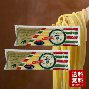 【メール便送料無料】てのべDEパスタ 200×2個セット TP-30(約4人前)【 小豆島 キンダイ製麺 パスタ 手延べ はやゆで 】
