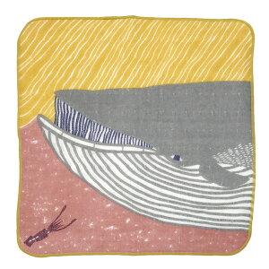 KATAKATAふわふわタオルナガスクジラ