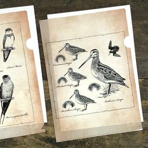 日本野鳥の会 クリアファイル