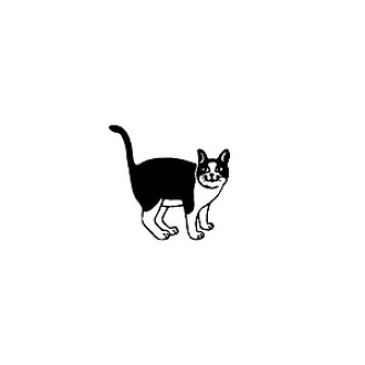 动物图章猫C