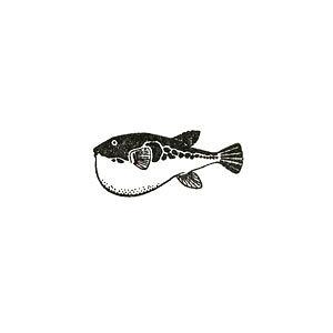 【対象商品3点以上でメール便送料無料】アニマルスタンプ フグ【ふぐ グッズ 魚 動物スタンプ 動物はんこ かわいい動物 雑貨 グッズ メッセージカード リアル デザイン イラスト おしゃれ