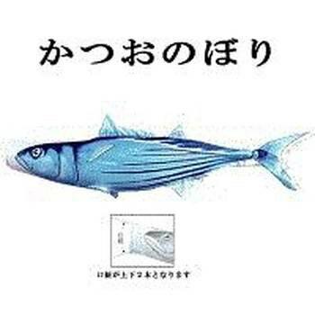 鯉のぼり 変わり鯉のぼり【魚図鑑シリーズ 鰹】 かつおのぼり 2m