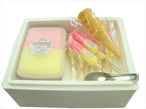 進藤冷菓 ババヘラ・アイス&キャンデーセット