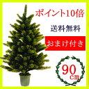 クリスマスツリー PLASTIFLOR オーナメント ポイント