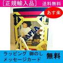 カプラ200(KAPLA)【あす楽対応】絵本「カプラの魔法」とカラーカプラ6枚付き 送料無料 ラッピング無料 知育玩具 積み木 木のおも…