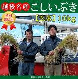 新潟県産特別栽培米こしいぶき(玄米)10kg【新潟県産コシイブキ】【もりばやし農園特別栽培米コシイブキ】