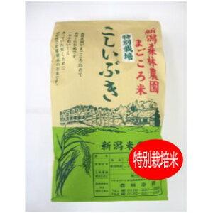 ★送料無料★こだわり特別栽培米こしいぶき白米30kg【もりばやし農園自家栽培】