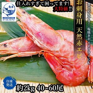 海老 お刺身用天然赤エビ 刺身 天然 アルゼンチン 赤エビ 2kg 生食用 生えび L2 エビ 訳あり 限定価格 BBQ 焼 えび
