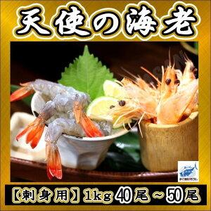天使の海老 刺身用 1kg(40〜50尾入)エビえび塩焼き刺身BBQ 高級 厳選 同梱可能 ニューカレドニア産