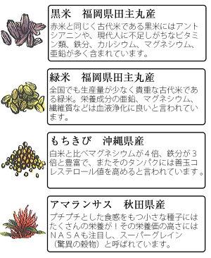 若竹屋八穀あまざけ720ml瓶×6本セット(甘酒・あまさけ・あま酒)
