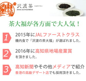 食べられるお茶ビバ沢渡の茶大福(6個+沢渡茶ティーパック3つ)2セット【高知県地場産業賞】【メディアでも話題】【お中元のし対応可】