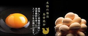 烏骨鶏ゴールデンエッグ(味付燻製たまご)10個入(化粧箱)【烏骨鶏本舗】【お中元・暑中・残暑のし対応可】