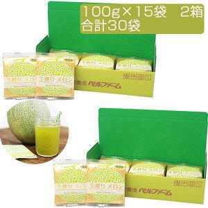 国産 生搾り 100% メロンジュース (100g×15袋)×2セット 合計30袋 冷凍 採れたてすり搾り製法 完全無添加 ベルファーム
