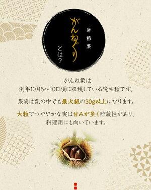【栗きんとん】手作りがんね栗衛門40gサイズ×12個入り【無添加】【がんね栗の里】