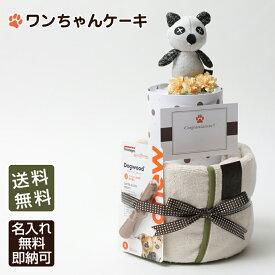 【Rakutenエール】おむつケーキ専門店が開発!ペットシーツケーキ!