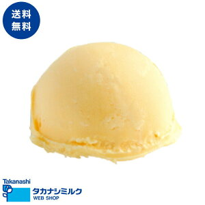 送料無料 タカナシ 北海道カスタードアイスクリーム 2リットル | タカナシ乳業 タカナシミルク アイスクリーム業務用 アイス シャーベット カスタードアイスクリーム バニラアイス カスタ