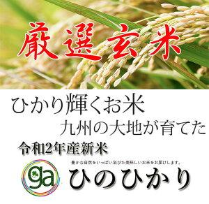 【イチ押しの玄米】米 20Kg 令和2年 新米 ひのひかり 高級 減農薬 玄米 送料無料 定期便 福岡県産 ふるさと米 産地直送 こめ コメ 特A ヒノヒカリ 美味しい米 うまいお米 厳選米 九州のお米 2020