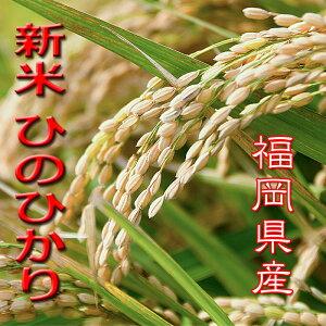 【おすすめの玄米】新米 10Kg 令和2年産 減農薬 ひのひかり 玄米 送料無料 福岡県産 ふるさと米 産地直送 ヒノヒカリ 美味しい うまい お米 厳選米 九州 2020年産 国産 米 10キロ 健康米 玄米食