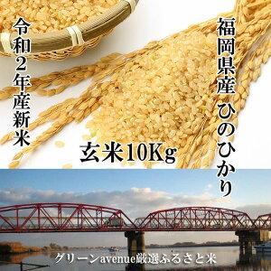 新米 10Kg 令和2年産 ひのひかり 玄米 送料無料 福岡県産 ふるさと米 産地直送 ヒノヒカリ 美味しいお米 うまいお米 厳選米 九州のお米 2020年産 国産米