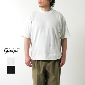 GICIPI ジチピ メンズ リネン混モックネックTシャツ POLPO(ポールポ) 2111P*送料無料・メール便発送*《即日発送》【YDKG-ms】