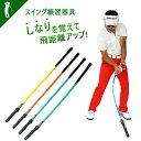 【 同梱不可 】ゴルフ スイングトレーナー ゴルフ ゴルフ用品 スイング 練習用品 練習器具 エリート チェックスティッ…