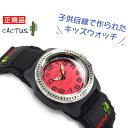 【CACTUS】カクタス クォーツ アナログ キッズ こども 用 腕時計 レッド ブラック ベルクロベルト CAC-45-M07
